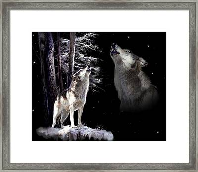 Wolf  Howling Memory Framed Print by Gina Femrite