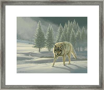 Wolf In Fog    Framed Print by Paul Krapf