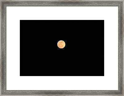 Wolf Moon Framed Print by Brenda Donko