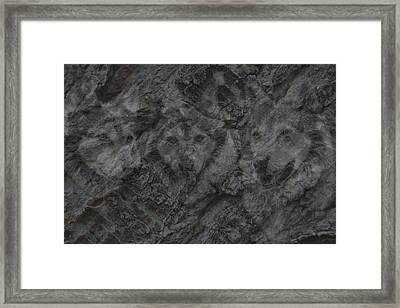 Wolf Shadows Framed Print by Ernie Echols