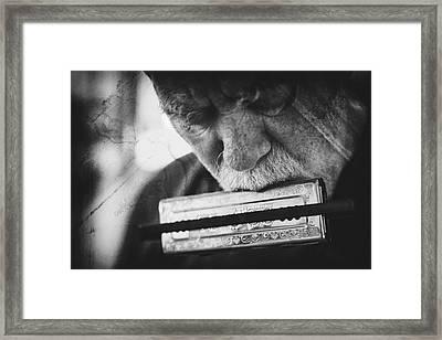 Wolf With Harmonica Framed Print by Roswitha Schleicher-schwarz