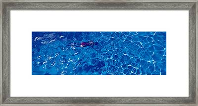 Woman In Swimming Pool Framed Print by Panoramic Images