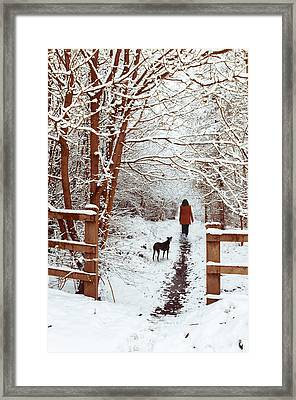 Woman Walking Dog Framed Print by Amanda Elwell