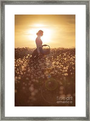 Woman With A Wicker Basket At Sunset Framed Print by Lee Avison