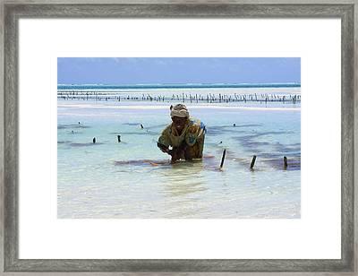 Women Of The Sea Framed Print by Aidan Moran