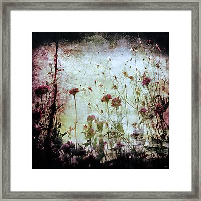 Wonderland Framed Print by Trish Mistric