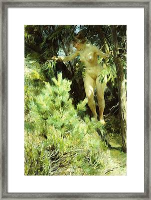 Wood-sprite Framed Print by Anders Leonard Zorn