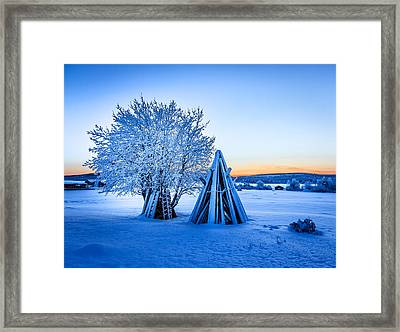 Wood Stacked And A Snow Covered Tree Framed Print by Panoramic Images