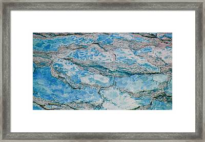 Wood To Water Framed Print by Stephanie Grant