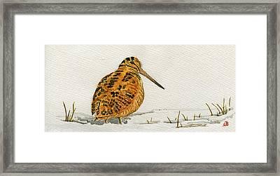 Woodcock Bird Framed Print by Juan  Bosco