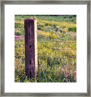 Wooden Fencepost Framed Print by Tracy Salava