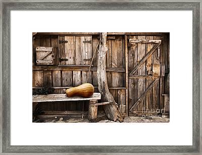 Wooden Shack Framed Print by Carlos Caetano