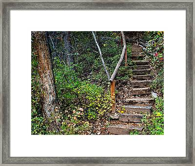 Woodland Stairs In Aspen Colorado Framed Print by Julie Magers Soulen