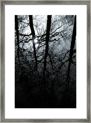 Woodland Waters Framed Print by Dave Bowman
