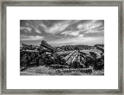 Woods At The Road. Countryside Framed Print by Jenny Rainbow