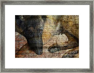 Wordless Framed Print by Judy Wood