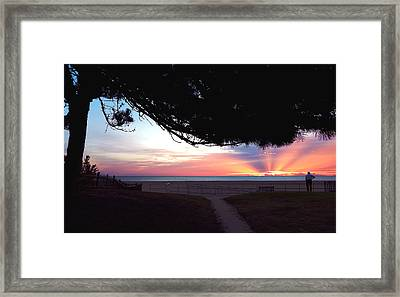 Work Can Wait Framed Print by Seas 'n Trees