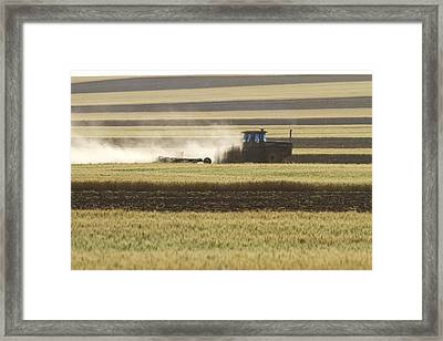 Working Farmer Framed Print by James BO  Insogna