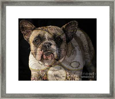 World Domination Framed Print by Judy Wood