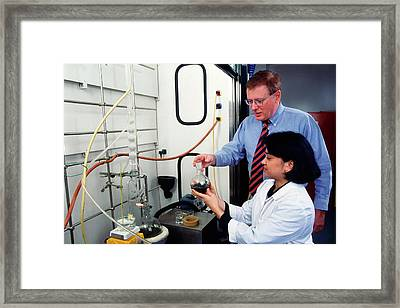 Wormwood Oil Analysis Framed Print by Scott Bauer/us Department Of Agriculture