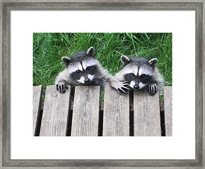 Would You Please Move Over Framed Print by Kym Backland