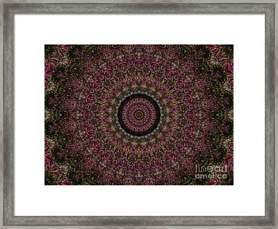 Woven Kaleidoscope Framed Print by R McLellan