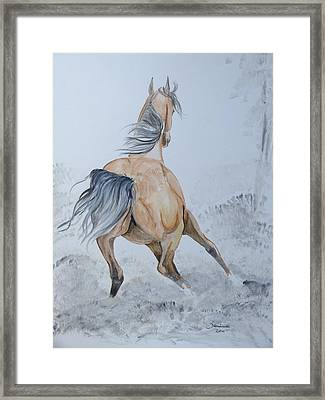Wow Framed Print by Janina  Suuronen