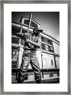Wrigley Field Ernie Banks Statue In Black And White Framed Print by Paul Velgos