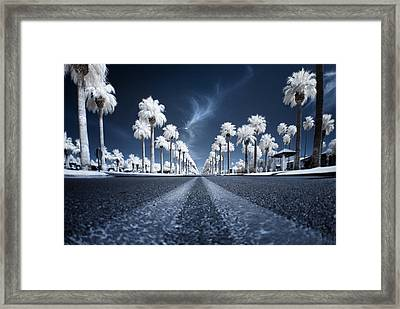 X Framed Print by Sean Foster
