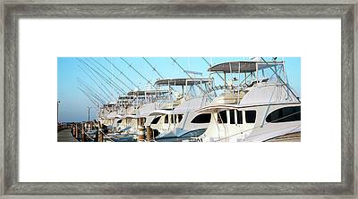 Yacht Charter Boats At A Harbor, Oregon Framed Print by Panoramic Images
