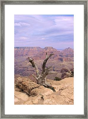 Yaki Point  In Grand Canyon Framed Print by Viktor Savchenko