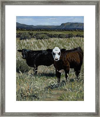 Yearlings Framed Print by Timithy L Gordon