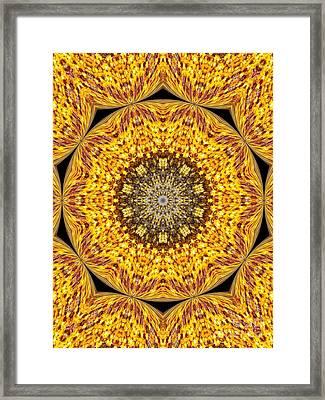 Yellow Burst  Framed Print by Annette Allman