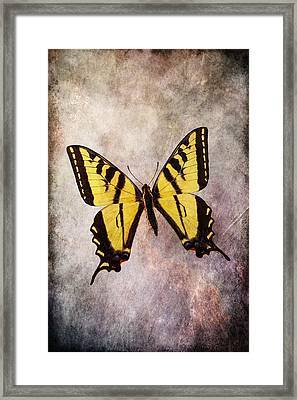 Yellow Butterfly Mood Framed Print by Garry Gay