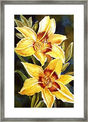 Yellow Daylilies Framed Print by Alfred Ng