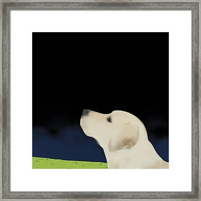 Yellow Dog Profile Framed Print by Marjorie Weiss