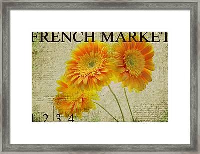 Yellow Gerber Framed Print by Rebecca Cozart