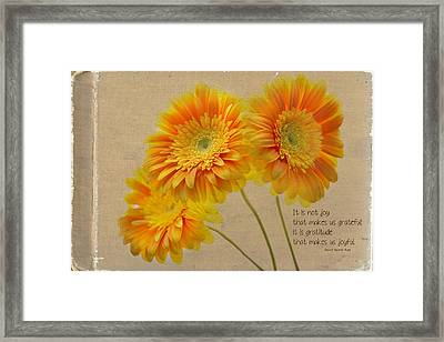 Yellow Gerber With Quote Framed Print by Rebecca Cozart
