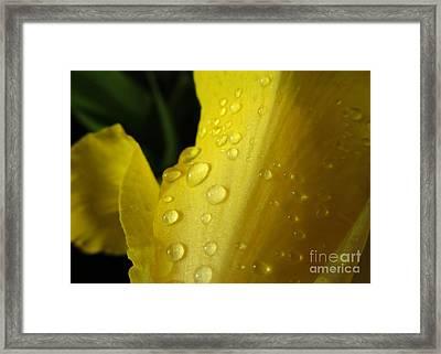 Yellow Glitter Framed Print by Renee Trenholm