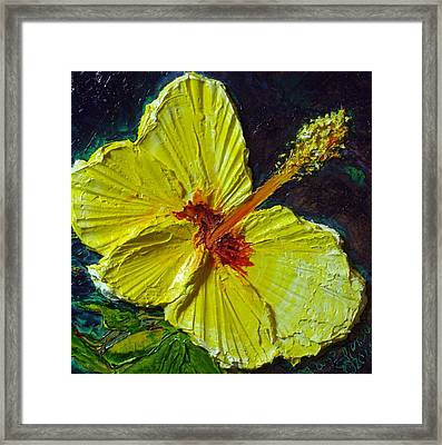 Yellow Hibiscus Framed Print by Paris Wyatt Llanso