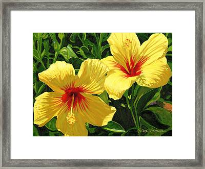 Yellow Hibiscus Framed Print by Steve Simon