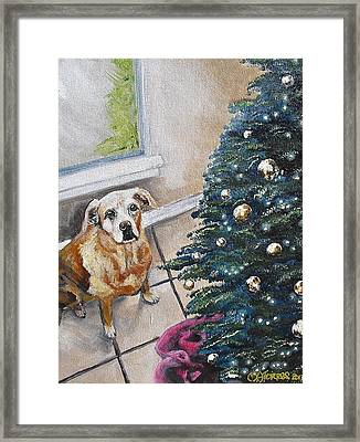 Yellow Lab Christmas Framed Print by Melissa Torres