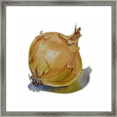 Yellow Onion Framed Print by Irina Sztukowski