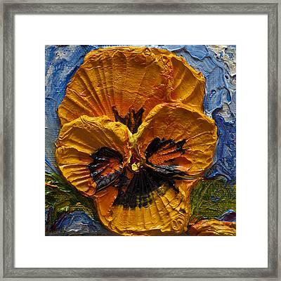 Yellow Pansy Framed Print by Paris Wyatt Llanso