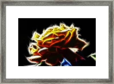 Yellow Rose Series - Neon Fractal Framed Print by Lilia D