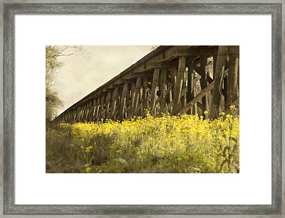 Yellow Rustic Setting Framed Print by Alicia Morales