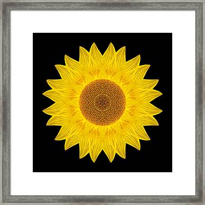 Yellow Sunflower Ix Flower Mandala Framed Print by David J Bookbinder