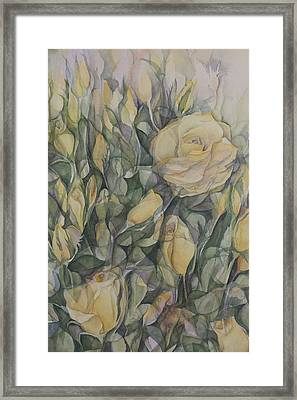 Yellow Tea Rose Closeup Framed Print by Lynne Bolwell