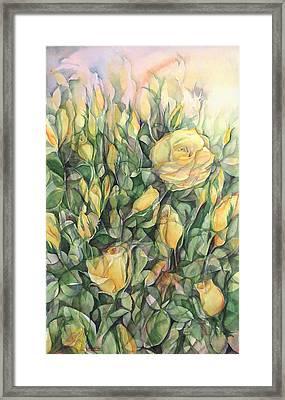 Yellow Tea Roses Framed Print by Lynne Bolwell
