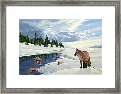 Yellowstone Fox Framed Print by Paul Krapf